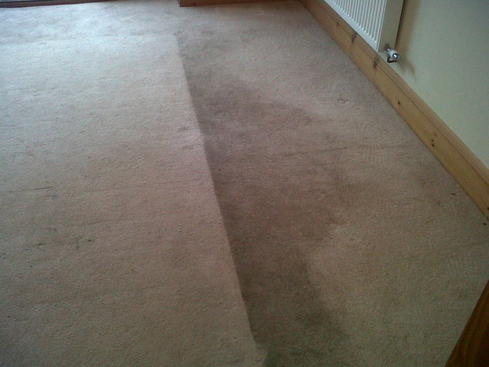 New Album of Carpet Bright UK - Cirencester Further Barton Lodge - Photo 18 of 32