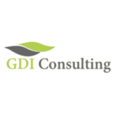 GDI Consulting