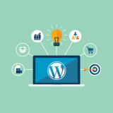 WordPress Developer in Milton