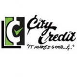 City Credit Of Denham Springs Inc