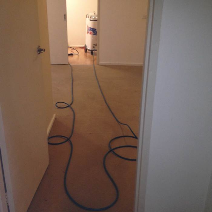 New Album of Proton Cleaning Geelong Level 2/83 Moorabool St - Photo 5 of 8