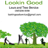 Lookin Good Lawn and Tree Service