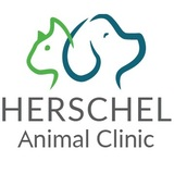 Herschel Animal Clinic, Jacksonville