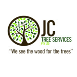 JC Tree Services Gold Coast