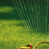 Sandy Property Maintenance and Landscaping