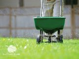 Profile Photos of Cutting Edge Lawn & Landscape