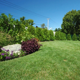 Profile Photos of Oconomowoc Lawn Care