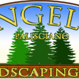 Angelo Palisciano Landscaping Inc