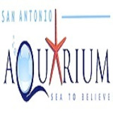 San Antonio Aquarium | Things to do For Kids