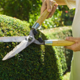 K Y Landscaping Services Inc