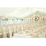 Profile Photos of Whitehouse Event Crockery