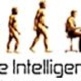 Hire Intelligence NZ