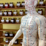 Dr. David Sontag's Acupuncture and Wellness Clinic