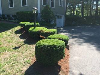 Residential Landscaping<br />