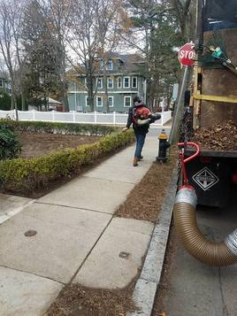 Seasonal and site cleanup services<br />  Profile Photos of Boston Landscaping Services 6 Liberty Square Suite 260 - Photo 6 of 9