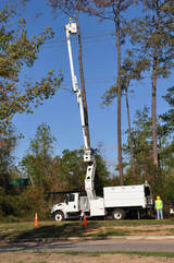 Tree maintenance services