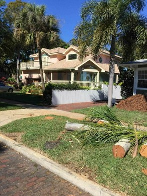On Demand Tree Service of On Demand Tree Service 510 34th St South, - Photo 2 of 4