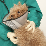 New Album of Pet Medical Center