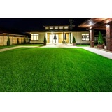 Profile Photos of 10X Turf Lawn Care Services