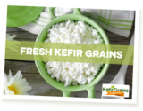 Profile Photos of Kefir Grains