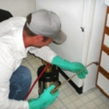 Pest control plainfield NJ