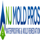 NJ Waterproofing and Mold Remediation LLC