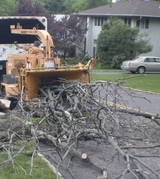 Profile Photos of Kansas City Tree Removal Company