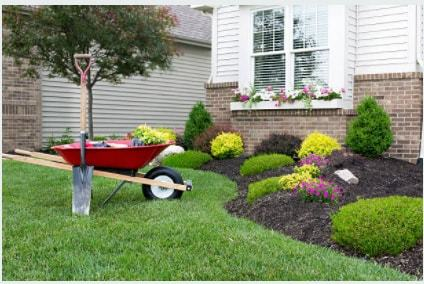 Profile Photos of Mendoza Landscaping Columbia SC 1510 Bluff Rd - Photo 3 of 5