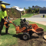Chippers Tree Service