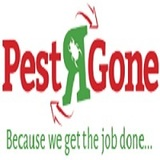 Profile Photos of pestrgone - Cockroach Control Toronto