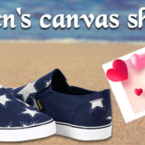 Canavs Shoes