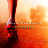 The Gene Box - Genetic testing and DNA Test for fitness.