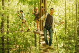 New Album of Go Ape Trent Park