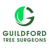 Guildford Tree Surgeons 14 London Road
