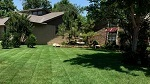 Profile Photos of Bare Foot Turf - Lawn Care - Weed Control - Edmond OK
