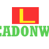 Top Digital Agency In India, Best Online Marketing Company - Leadonweb