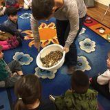 New Album of Concordia Christian Early Learning Center