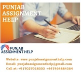 New Album of Punjab Assignment Help