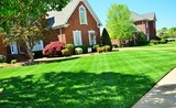 Profile Photos of Pro Landscaping of Brookfield