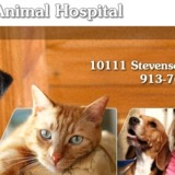 Falcon Valley Animal Hospital