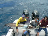 Profile Photos of Ecuagringo - Marlin and Tuna Fishing