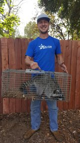 Profile Photos of All Star Animal Trapping