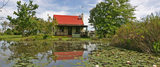Froggy Pond, Forest Edge - Nature Lovers' Retreat, Knysna