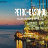 PETRO-GASOHOL DRILLING EQUIPMENT & SERVICES, INC.