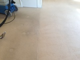 Carpet & Upholstery Cleaning of A Star Cleaning Services Ltd