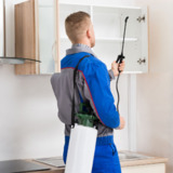 Pest Control Service in West Vancouver , BC