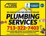 Profile Photos of Budget Home Services