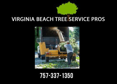 Profile Photos of Virginia Beach Tree Service Pros 1254 Bells Road - Photo 4 of 4
