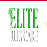 Best Rug & Carpet Cleaner