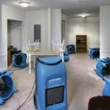 Torello Water Damage Restoration Service